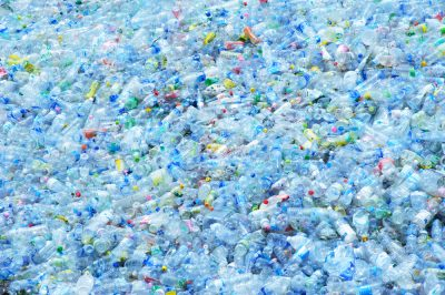 5 Most Important Materials to Recycle